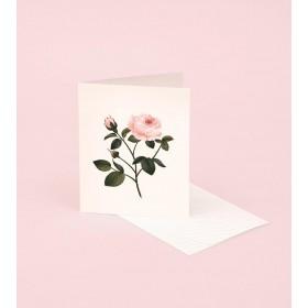 Tarjeta perfumada rosa